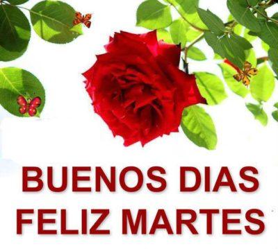 Feliz martes buenos dias a todos