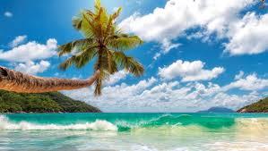 Imágenes de Playa: Los Lugares Más Deslumbrantes de la Tierra