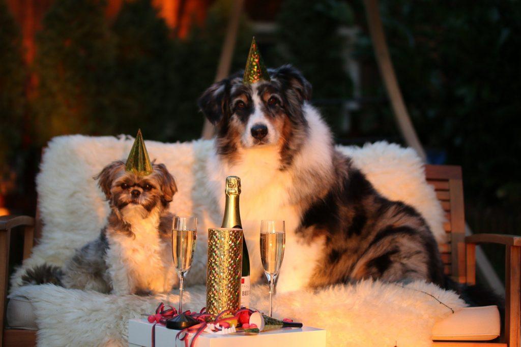 imagenes de fiesta de fin de año