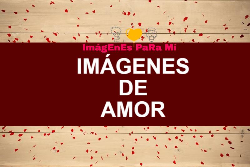 Imágenes de Amor: Bonitas, Tiernas y Románticas